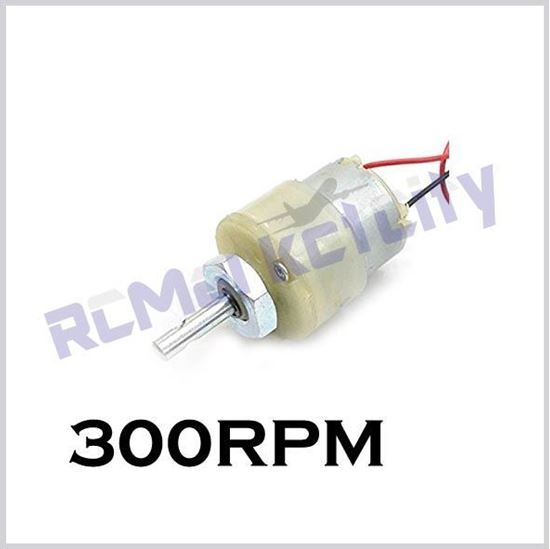 Picture of 300RPM geared motor